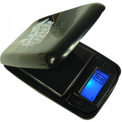 Precision Balance that weighs to the tenth of a gram