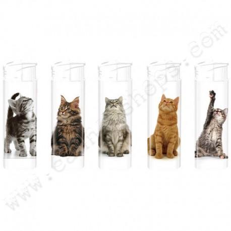 Briquets électroniques Multi Cats