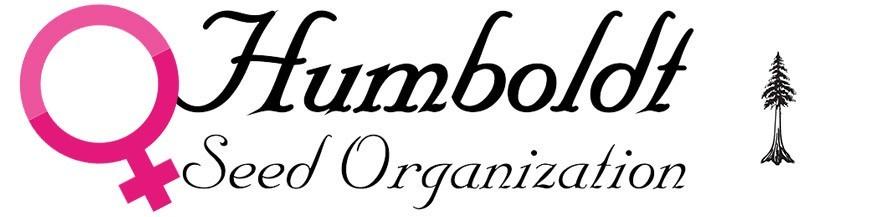 Humboldt Seeds Féminisées