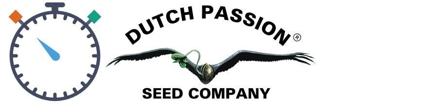 Dutch Passion Zaden Autoflowering